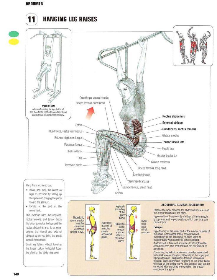 Strength training anatomy  11. Hanging leg raises  Abs, core, six pack, flat stomach, no more muffin top, summer body, bikini exercises