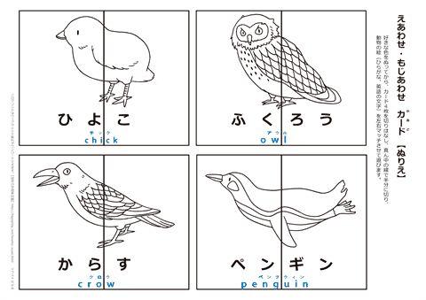 【ぬりえ】動物絵合わせカード 『ひよこ・ふくろう・からす・ペンギン』