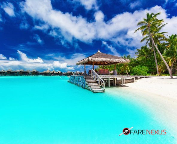 farenexus helps you get cheapest price for air travel, it is the best place for fare comparison and to book cheap flight deals in domestic and international flights . we are partners with major airlines and multiple travel agencies. we provide 24*7 service  to  our customers. Now find the best flight deals with just one click.