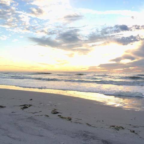 Indian Shores & Indian Rocks Beach | Visit St Petersburg Clearwater Florida