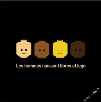 image drole - Les Hommes. Plus d'images drôles disponibles sur www.drolementvotre.com