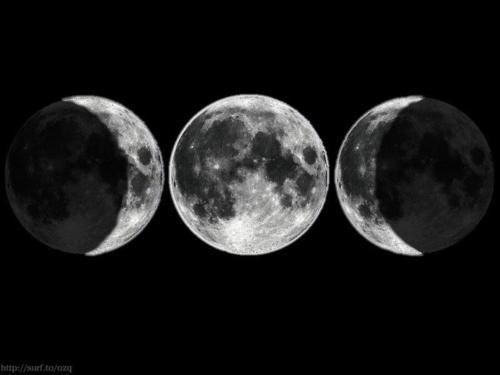 Triple Moon  #circle #art #moon  http://www.3.14-pi.net/