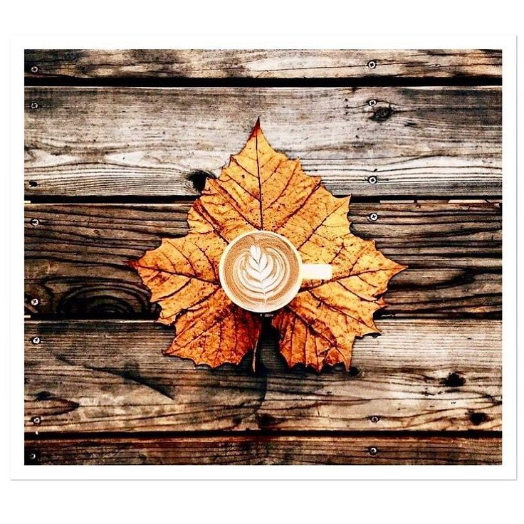 Good morning! #weekend #rainyday #moodoftheday #autumn #vogliadicoccole #cappuccino -->follow me on Instagram!