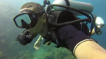 USS Liberty Shipwreck Scuba Diving Tour in Bali, Bali, Scuba Diving
