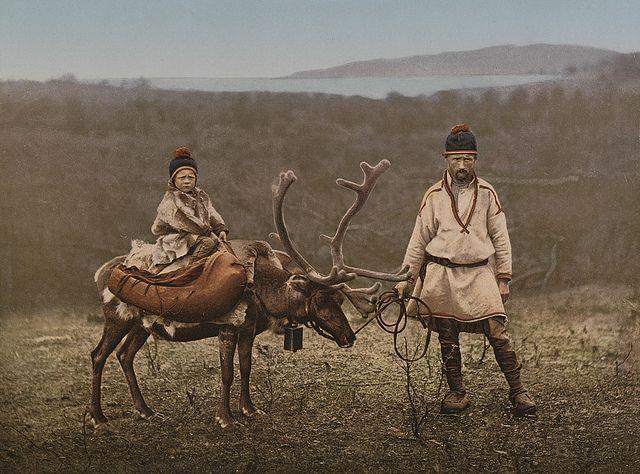 Lapper og Reinsdyr, ca. 1890-1900, Finnmark, Norway
