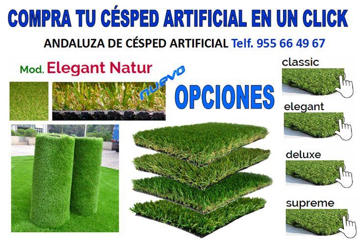 9 best garden ideas images on pinterest backyard ideas - Tipos de cesped ...