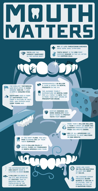 best 25 dental world ideas on pinterest kids dental care kids