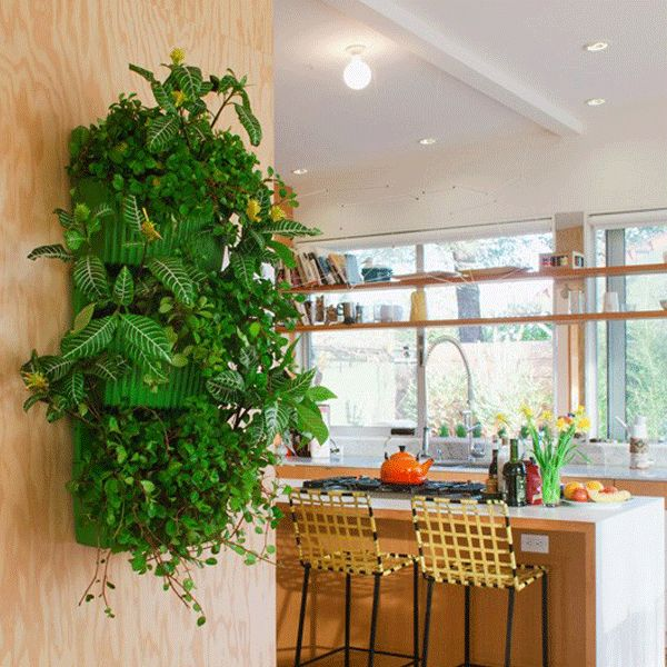 living wall planter indoor vertical gardening interior flora pinterest. Black Bedroom Furniture Sets. Home Design Ideas