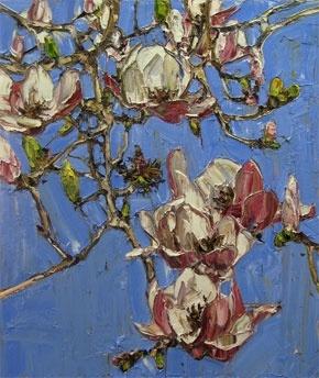Paddington Magnolia