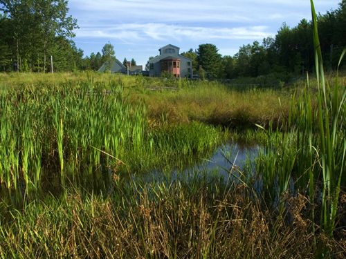 At the Doyle Conservation Center, storm water mitigation is achieved through a series of wet meadows, which filter runoff and create a diverse meadow habitat before the overflow reaches the existing wetlands. Michael Wasser Associates, Landscape Architecture, Boston.