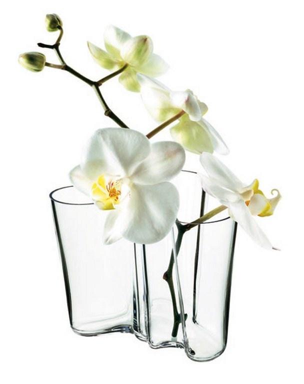 http://www.aitonordic.it/collections/protti-per-cucina-e-per-tavolo/products/vaso-alvar-aalto-iittala