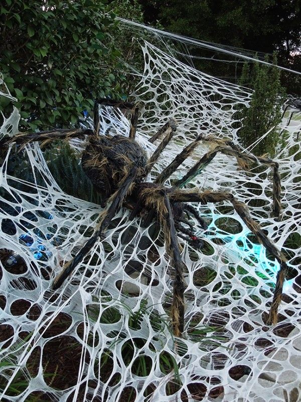 good mourning my halloween fiends i found this picture from the web - Halloween Spider Web Decorations