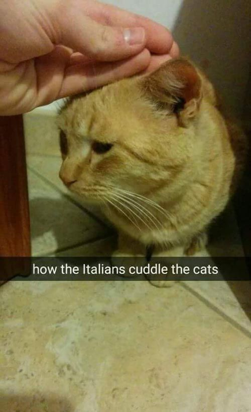 'How Italians Do Things' Is One Hot Meme (24 Pics)   The Blended Fun