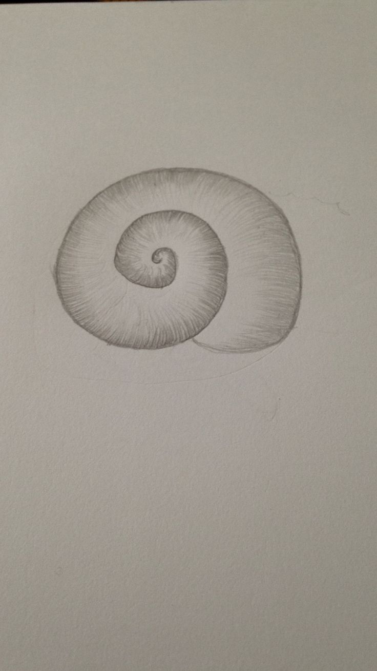 Simple pencil drawing.