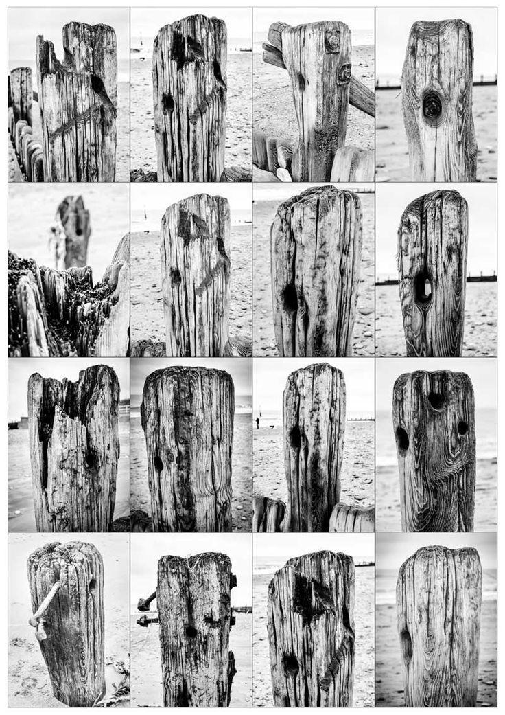 wood tops from hornsea beach