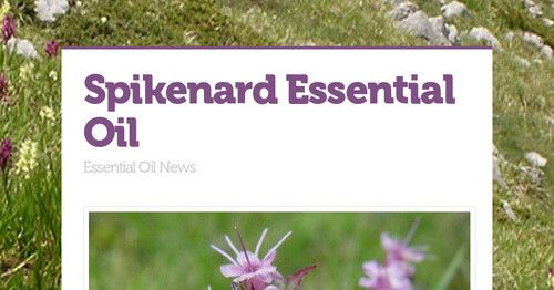 What about Spikenard Essential Oil? Latin Name: Nardostachys jatamansi The amber colored essential oil is obtained by steam distillation...