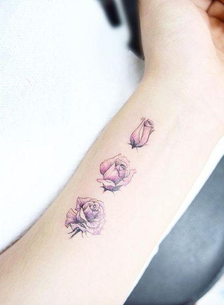 Hermoso y delicado diseño de las distintas etapas de una rosa.