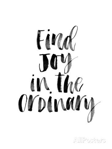 Find Joy in the Ordinary Poster by Brett Wilson at AllPosters.com