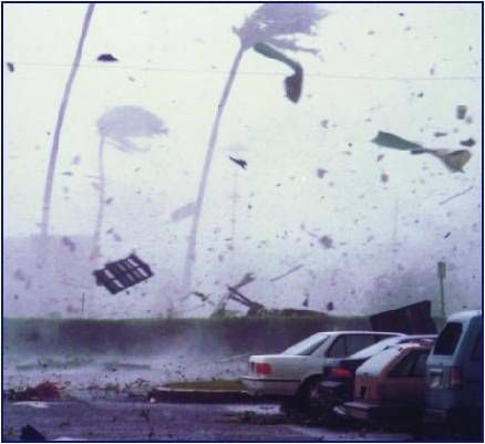 We survived hurricane Iniki . Kauai , Sept 11, 1992