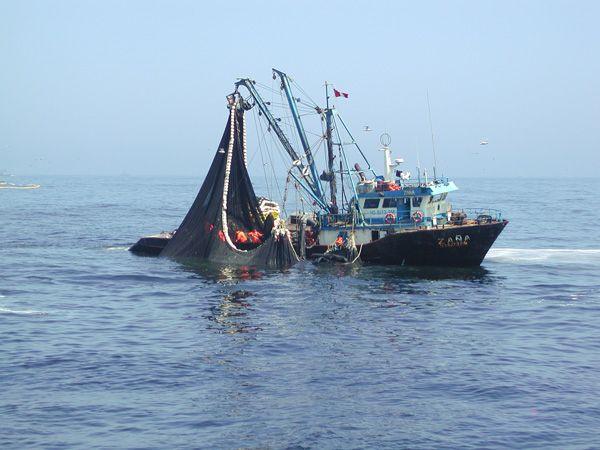 Mercados económicos detrás de La Haya. Perú: El pescado que desaparece http://hbanoticias.com/3427