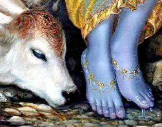 Na luz de Krishna - o amor em ação...  Wagner Borges
