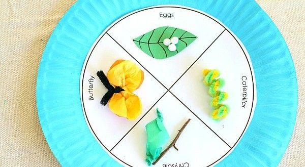 Kelebeğin Oluşumu - Okul Öncesi Etkinlik Kütüphanesi - Madamteacher.com