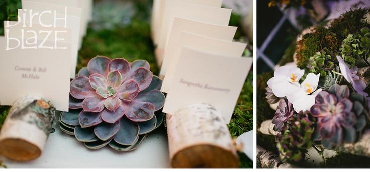 Escort card display featuring Birch Tree holders. designed by Emily Herzig Floral Studio.