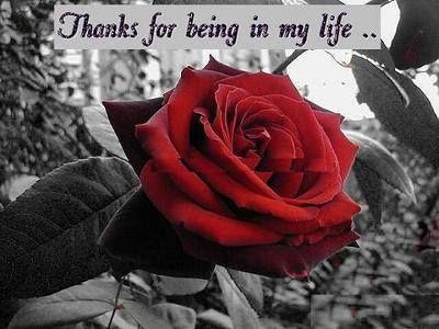 thanks - June 2, 2013