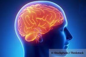 La flora intestinal dañada puede afectar su salud mental, lo que provoca problemas de salud como el autismo, la depresión y la ansiedad. http://espanol.mercola.com/boletin-de-salud/conexion-intestino-cerebro.aspx