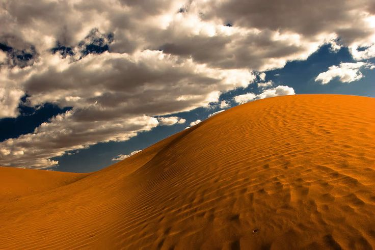 Damian Trevor - Beautiful Deserts Nature Photography