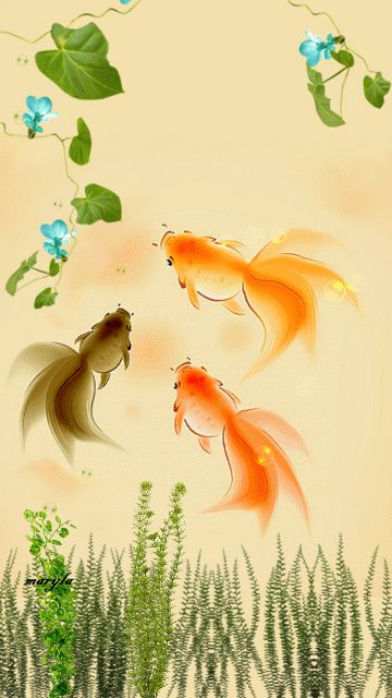 Fish Tank 3d Wallpaper Free Animated Gold Fish Mobile Wallpaper By Maryla75 On