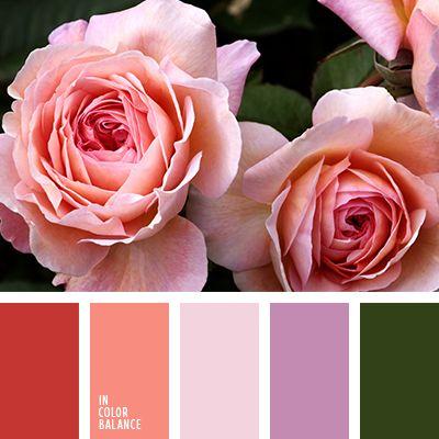 """""""пыльный"""" розовый, кораллово-красный, коралловый, лиловый цвет, оттенки оранжевого, оттенки розового, оттенки рыже-коричневого цвета, подбор цвета, тёмно-зелёный, фиолетовый, цвет зелени, цветовое решение для дома."""