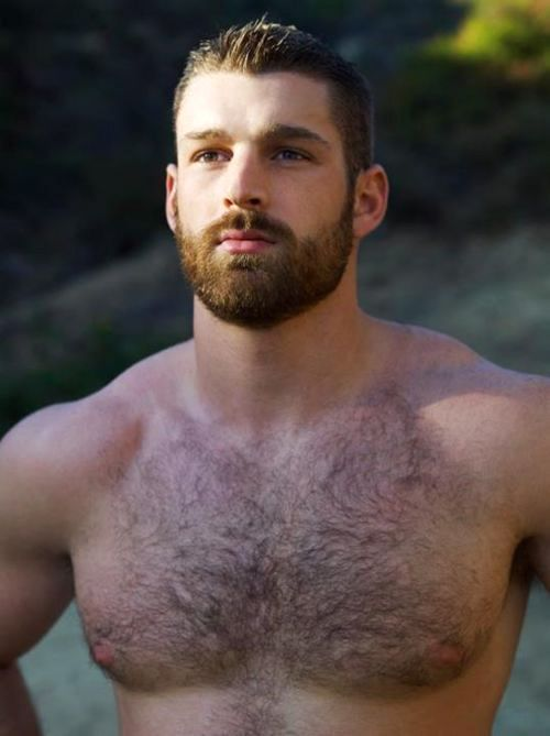 Something Bout A Big Guy With Beard N Sexy Hairy Chest