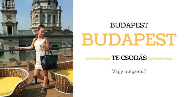 Vidéki lányként már nagyon régen vágytam arra hogy Budapestre költözhessek. Mindig is imádtam a várost. Viszonylag gyakran jártunk fent; vásárolni programok miatt családnál vagy egyéb okokból. Mióta megvan a jogsim (azaz 6 éve) vezetni is mindig én vezettem szóval számomra az itteni közlekedés is megszokott volt. Éppen ezért tudtam hogy ha egyszer felköltözöm akkor első perctől kezdve otthonosan fogok mozogni és ezért sokkal jobban vágytam rá. Gyerek koromban sokat költöztünk szüleimmel több…
