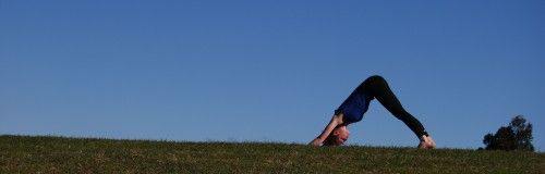 Yoga and tendonitis in the shoulders, elbows and wrists | om gam yoga