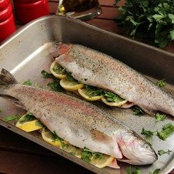 Baked Fresh Rainbow Trout--tried and true (by those who were NOT allergic) :)