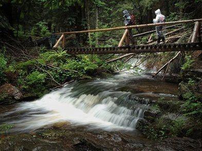 Výlet pro zdatné turisty v Jeseníkách - z Karlovy Studánky do Koutů nad Desnou