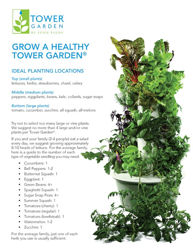TOWER GARDEN - Using aeroponics and our specially formulated Tower Tonic plant food, it grows almost any vegetable, herb, or flower—and many fruits—in less time than it takes in soil.*