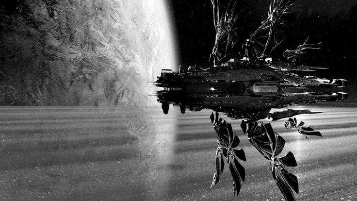 Paronator - Sunset / Armada Music Bundles