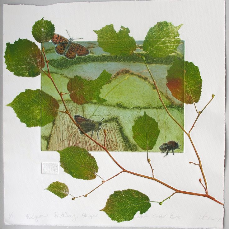 Lynn Bailey ~ Collagraph mono print with drypoint chine colle. Paper size 15 inches x 15 inches