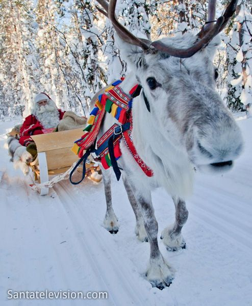 Rovaniemi in Lapland – The Official home town of Santa Claus