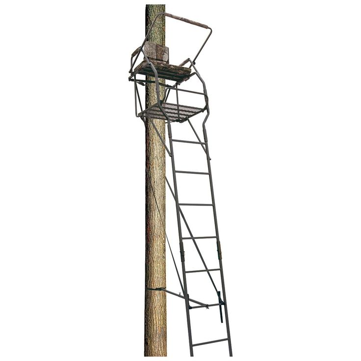 Big Dog 22 Lancer Extreme Ladder Tree Stand Hunting