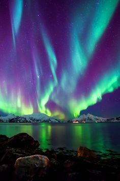 Northern Light Skulsfjord Tromsø by Ronny Mikkelsen / lovetotravel-sh.blogspot.com?utm_content=buffer46953&utm_medium=social&utm_source=pinterest.com&utm_campaign=buffer #попробуйэтотмир