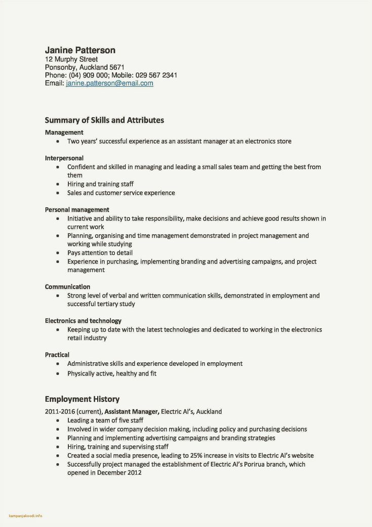 47 example customer service summary resume collection in