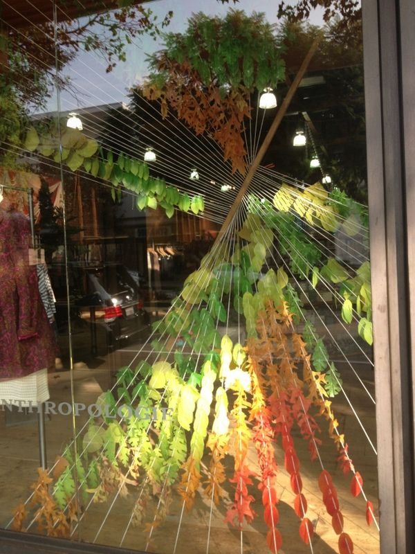 autumn window displays - Google Search