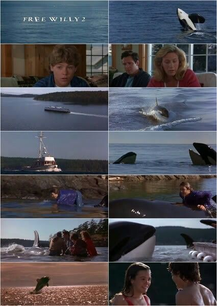 23 best images about Free Willy 1-4 on Pinterest | Free ...