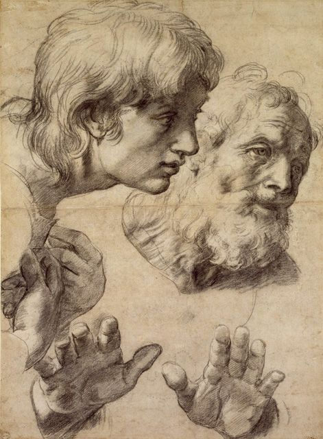 Raphael's study of heads and hands. Interesting to compare him to Da Vinci and…