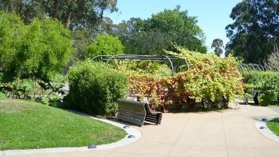 Garden area outside de Young Museum