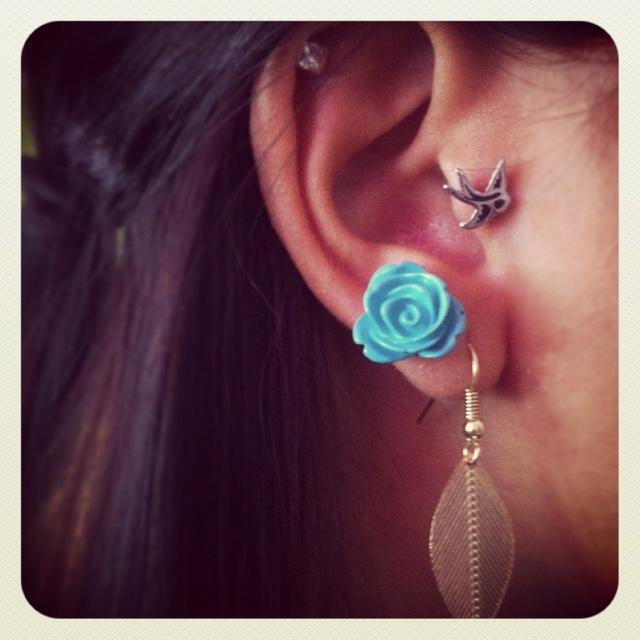 Earrings... bird tragus piercings | Want | Pinterest ...
