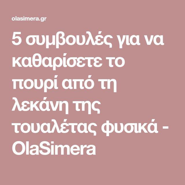 5 συμβουλές για να καθαρίσετε το πουρί από τη λεκάνη της τουαλέτας φυσικά - OlaSimera